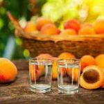 Самогон из абрикосов в домашних условиях — 8 лучших рецептов приготовления браги
