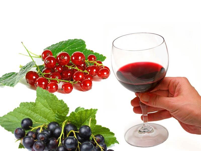 вино из черной и красной смородины
