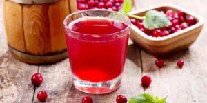 Домашняя брусничная настойка на водке, самогоне, спирте — 15 рецептов с пошаговым приготовлением