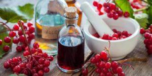 Домашняя настойка на калине – 21 рецепт напитка с пошаговым приготовлением