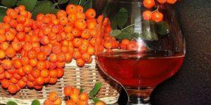 Настойка на красной рябине в домашних условиях – пошаговые рецепты с фото