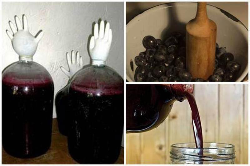 как сделать терновое вино